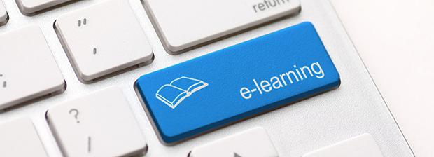 Стоит ли инвестировать в заочное обучение